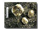 Farbglas Granulat: Saragossagrün